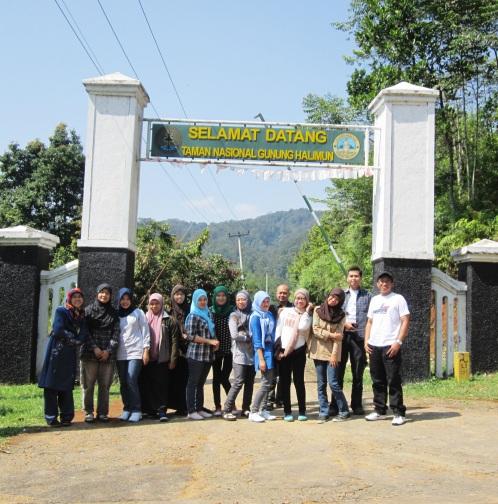 Welcome to Gunung Halimun